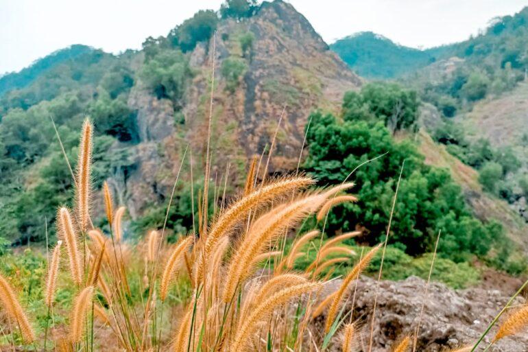 Bukit Batu Gambir